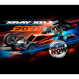 "Xray Buggy XB2 2021 ""Carpet Edition"" KIT 320010"